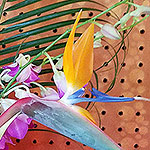 ACCESSORIES: Orchids and birds of paradise arrangement